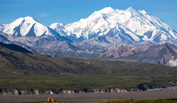 Day 02 - Anchorage - Denali National Park (400 KM / 5 hours)