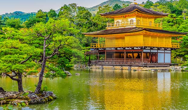 Day 06 - Guided Tour of Kyoto