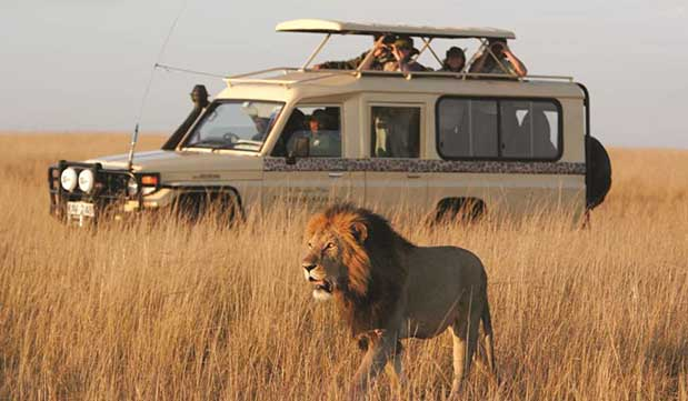 Day 10 - Chobe National Park Game Drive