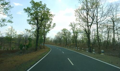 En route Bandhavgarh National Park